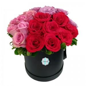 Box 24 Rosas (DM002)
