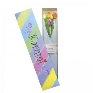 Caja 6 Tulipanes (C6T)